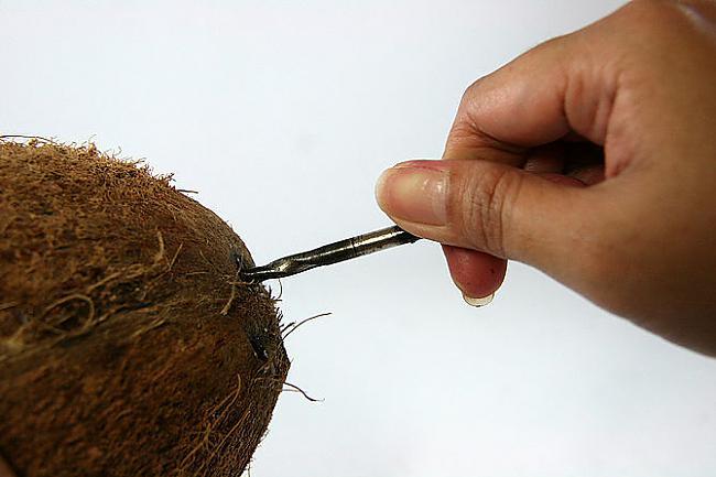 Urbies iekscaronā tik dziļi... Autors: plunkš Kā iegūt kokosrieksta skaidiņas?