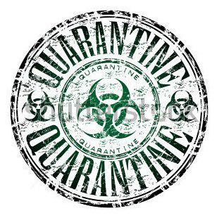 Autors: infectedgrrl Quarantine